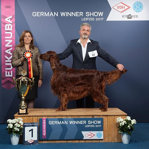 German Winner 2017